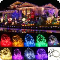 10M 12V 100 LED USB Copper Wire Flexible Strip Light for Xmas/Wedding/Party/Decorating 9 Color Available