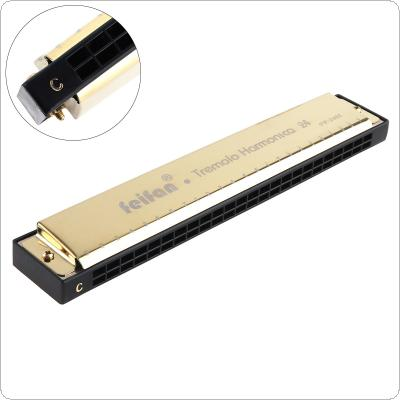 FEIFAN Gold 24 Holes 8K Titanium Harmonica Tremolo Tone KeyC Harp Mouth Organ Musical Instruments