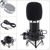 Professional BM 5000 Condenser Microphone with Circuit Control and Gold-plated Large Diaphragm Head for Studio / KTV