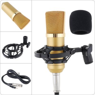 Professional BM-700 Condenser Microphone with Circuit Control and Gold-plated Large Diaphragm Head for Studio / KTV