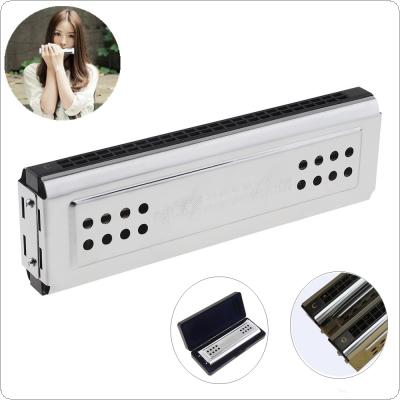 Professional 24 Holes Key Of C&G Silver Double Side Tremolo Harmonica for Adult Beginner and Children