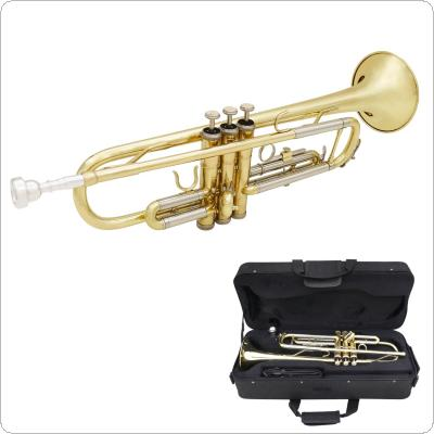 Gold & Silver Two-tone Trumpet Bb Flat Brass Gold Painted with Storage Case Cleaning Brush Gloves