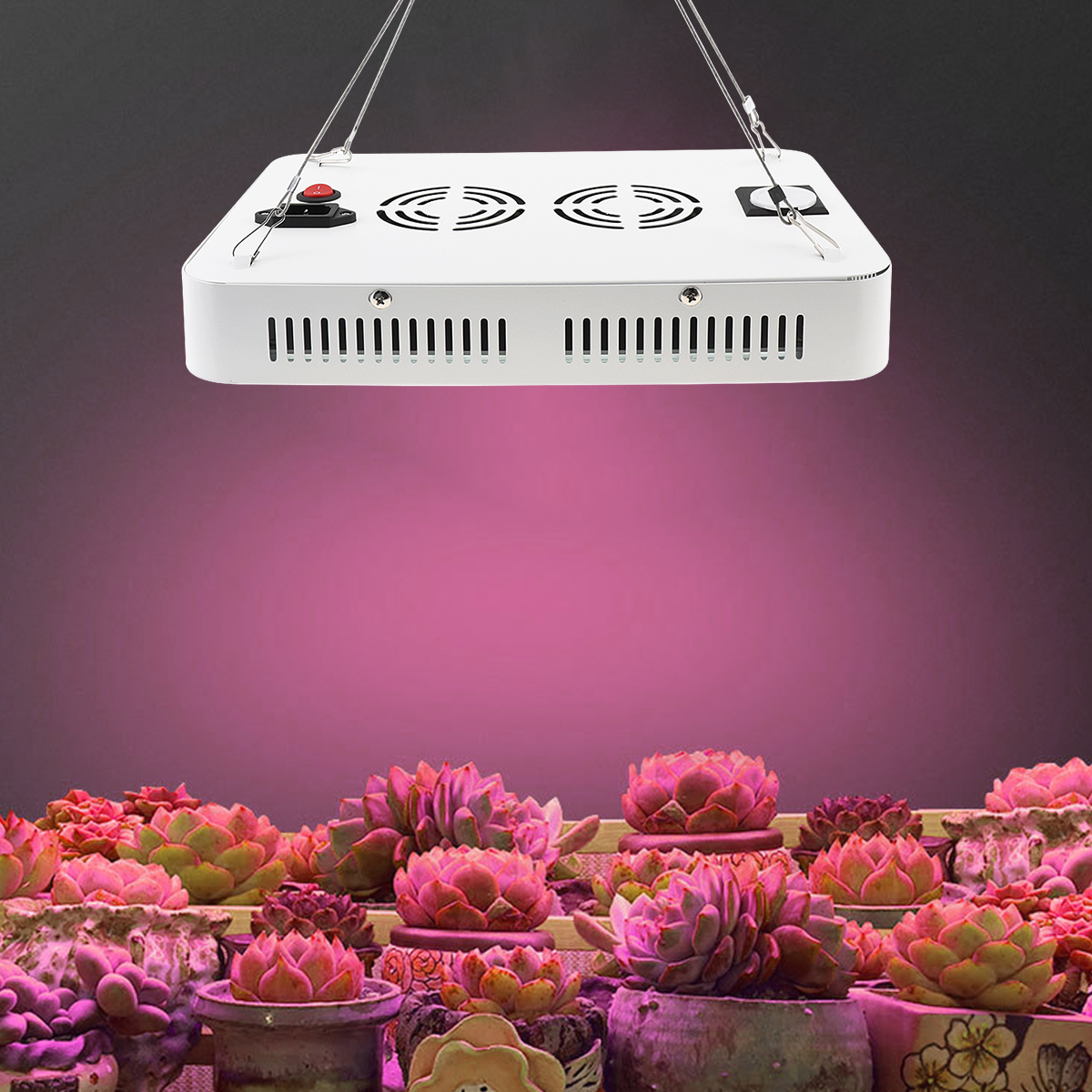 LED Plant Grow Light 1000W Full Spectrum Sunlike Plant Light Dual Chip with ON/Off Switch for Indoor Plants / Seedling / Succulents / Growing / Blooming / Fruit